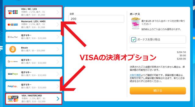 VISAカードの決済オプション
